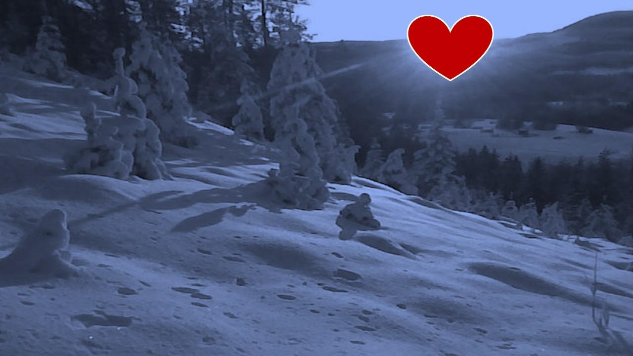 winter-heart